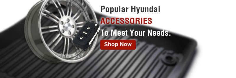 Popular Genesis accessories to meet your needs